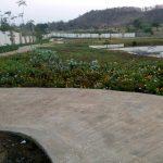 VBHC Hillview, Vasind